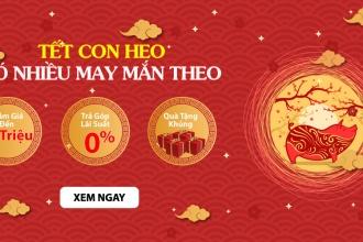 Tết Con Heo - Có Nhiều May Mắn Theo